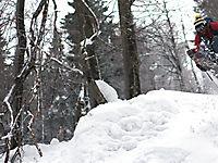 Команда ASS в Волшебном Лесу_4